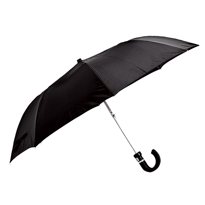 Auto-Open 2-Fold Umbrella with Sleeve